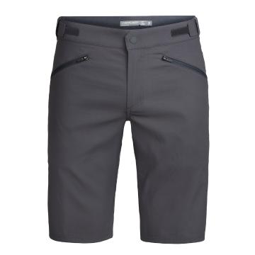 Icebreaker Mens Persist Shorts - Monsoon