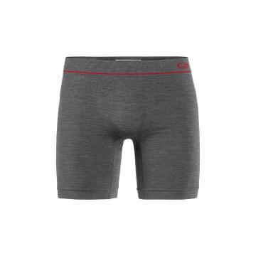 Icebreaker Men's Anatomica Seamless Long Boxer - Monsoon HTHR