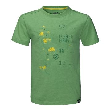 Jack Wolfskin Kid's Journey Tee - Vivid Green