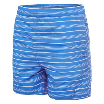 Speedo Boy's Timeless Watershorts - Iris/White