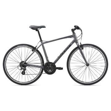 Giant 2019 Cross City 2 Bike