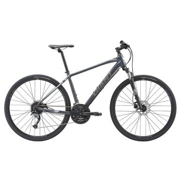 Giant 2019 Roam 2 Disc Bike
