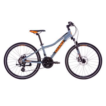 Giant Giant 2019 XTC Jr 1 Disc 24