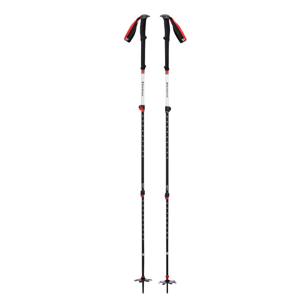 2020 Expedition 3 Ski Poles