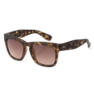 Dot Dash Skadoosh Sunglasses - Tortoise Satin/Gradient