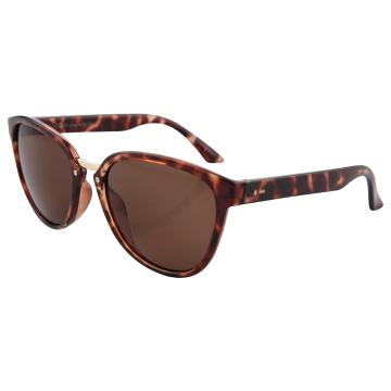 Dot Dash Summerland Sunglasses