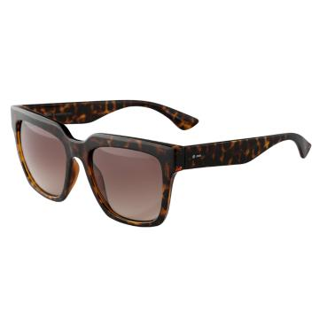 Dot Dash Falco Sunglasses - Tortoise Gloss/Brown Gradient
