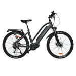 Hiko Rangler E-Bike