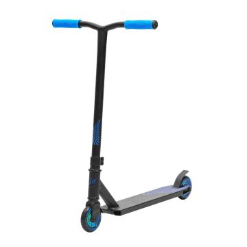 Invert Scooter TS1