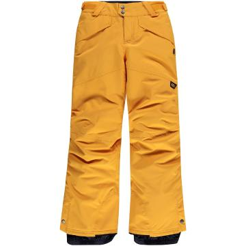 O'Neill 2021 Boy's PB Anvil Pants - Old Gold
