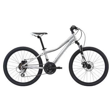 Liv 2020 Enchant 24 Disc Bike - Silver