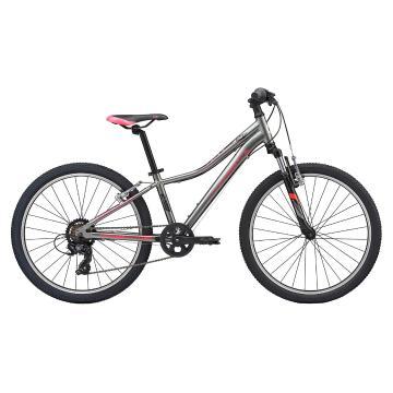 Liv 2020 Enchant 24 Bike