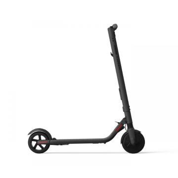 Segway Ninebot ES2 Scooter