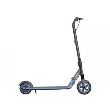 Segway Ninebot E10 Youth Scooter