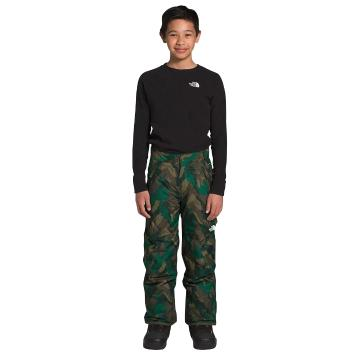 The North Face Boys Freedom Insulated Pants - Evergreen Mountain Camo Print