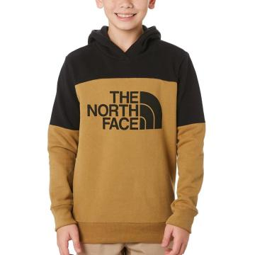 The North Face Boys Metro Logo Pullover Hoody - British Khaki